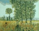 1031 TT Felder im Frühling v. Monet 50x40 cm